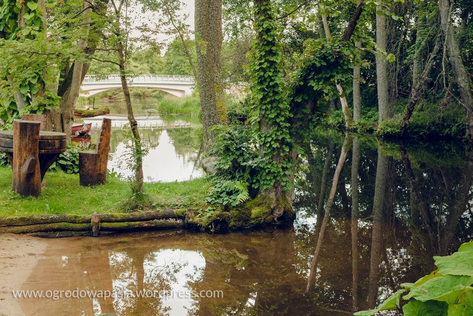 Takie miejsce wypoczynkowe we własnym ogrodzie ... marzenie