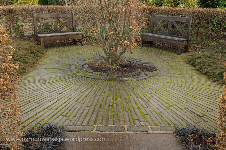 Arboretum_Edynburg_008.jpg