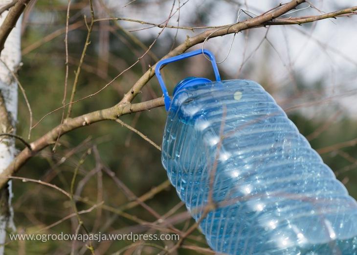 Takie umocowanie butelki sprawia, że nie spadnie z gałęzi po częściowym napełnieniu